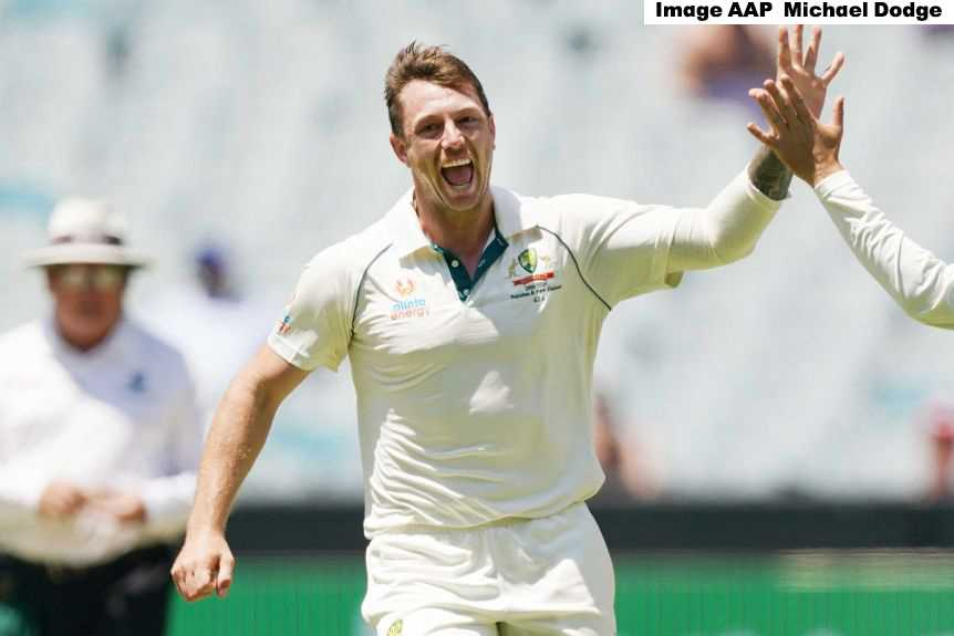 Australia vs India: James Pattinson ruled out of the third test match due to bruised ribs