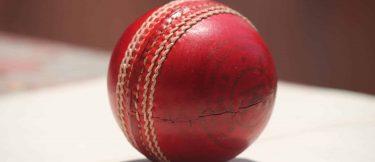 Cricket Schedule, News & Updates